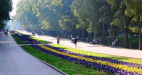باغ دریای وارنا