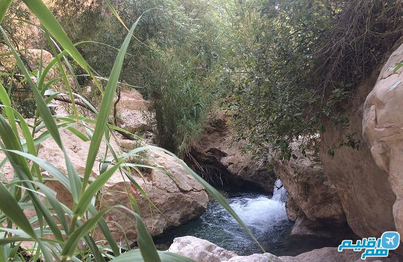 دره آکواریوم داراب