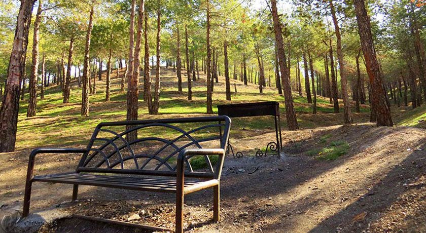 6 پارک جنگلی در دل پایتخت که باید رفت