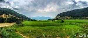 جاهای دیدنی کیاسر